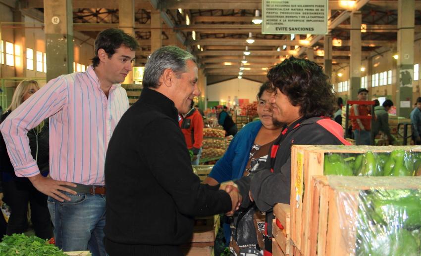 Quiroga-Mercado Concentrador