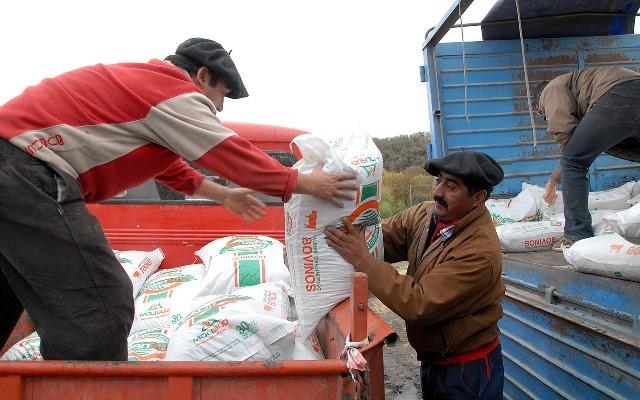 El gobierno provincial asiste a ganaderos afectados por las cenizas del Calbuco