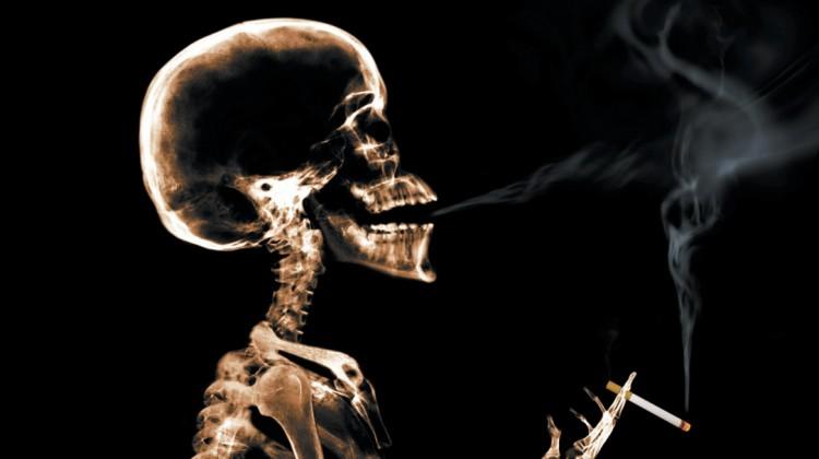 esqueletofumadordiego